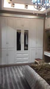 欧式柜门有哪些材质